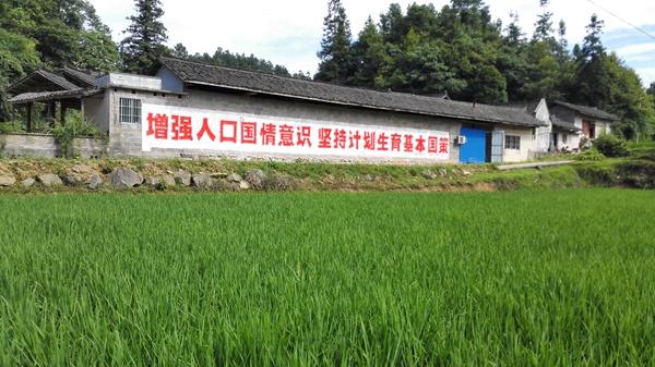 羊场镇多样化宣传卫生计生政策