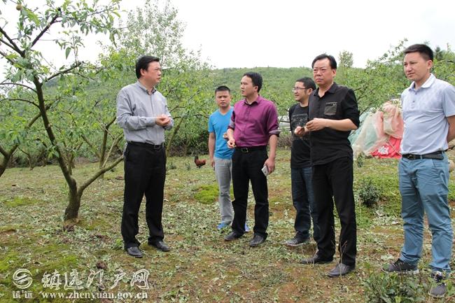 5月8日一大早,县委书记刘建新带领县委办主任杨召银,民政局局长张